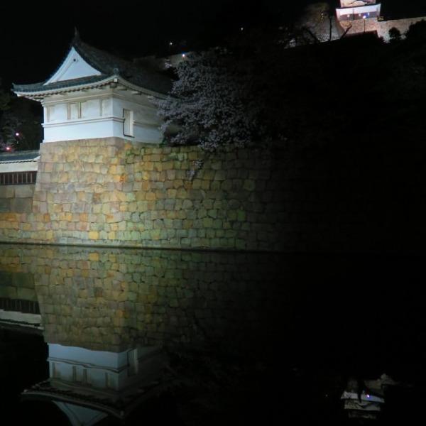 お堀に映るお城と満月