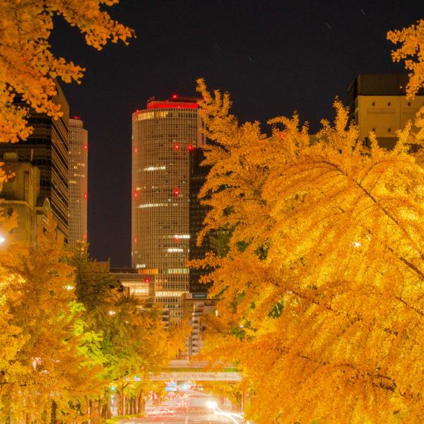 名古屋の定番撮影スポット