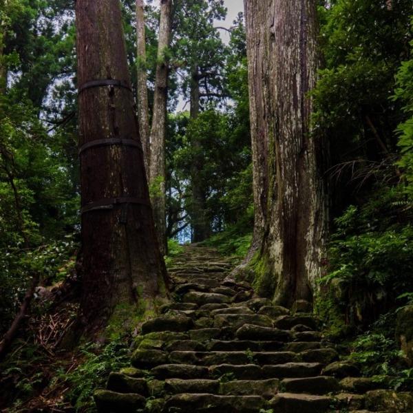 那智大社への山道