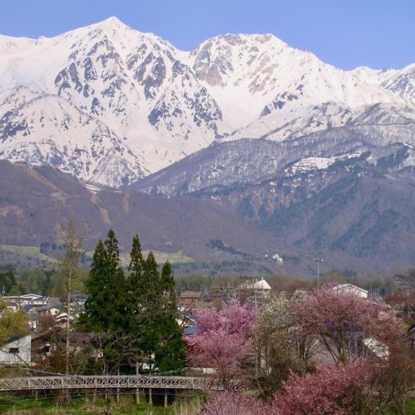 北アルプス白馬槍ヶ岳と杓子岳