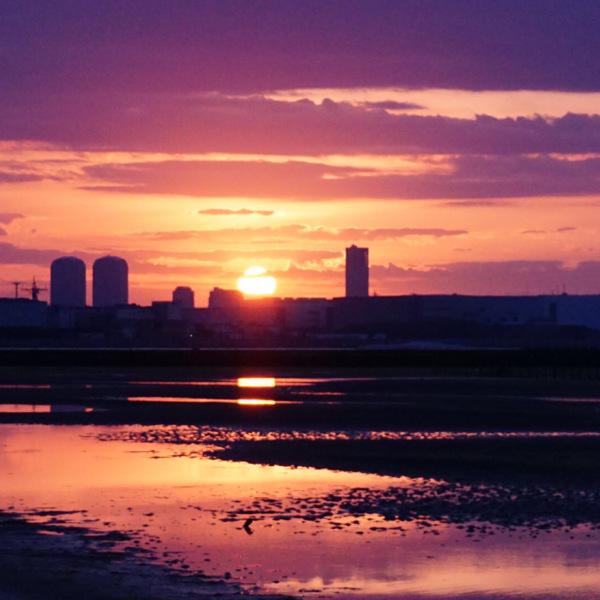 ふなばし三番瀬公園の朝焼け