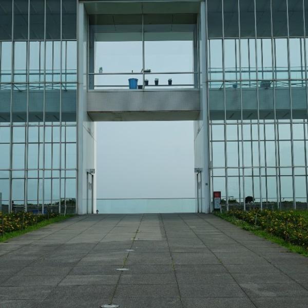 ひまわり2020🌻:葛西臨海公園/夏の散歩道✨