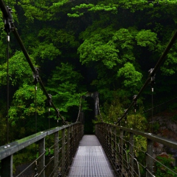 関之尾滝 吊橋