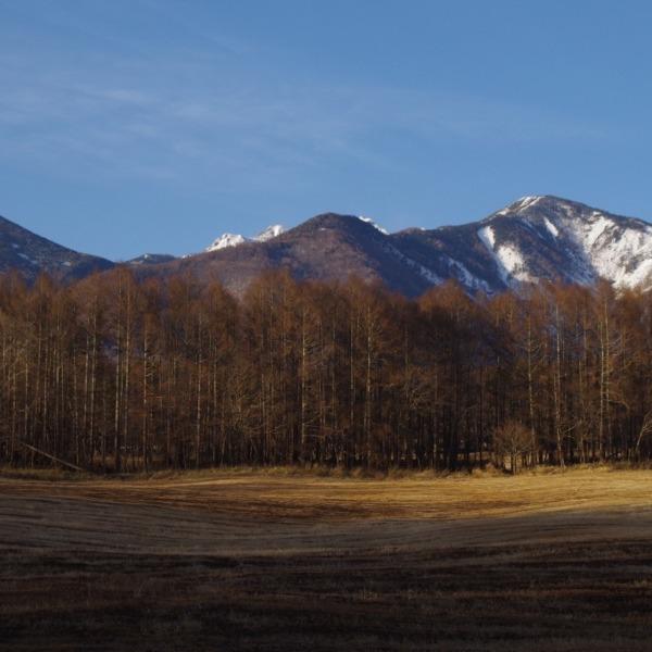 「午後の柔らかな陽射しと八ヶ岳」