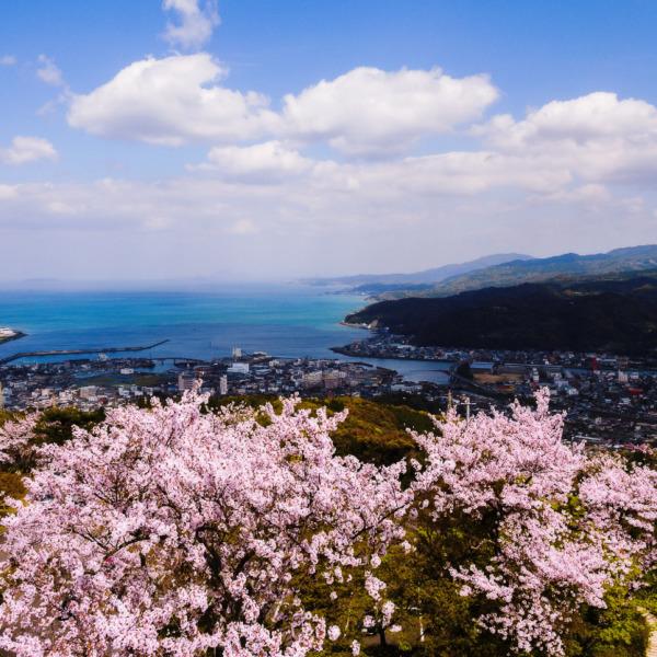 日本の宝島 天草