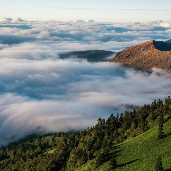 朝の大雲海