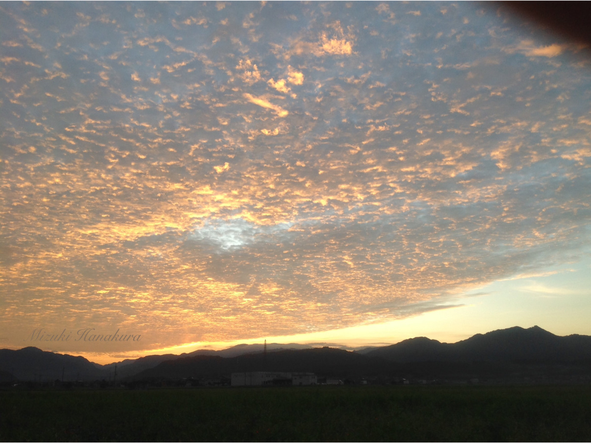 朝焼け/夏の終わり