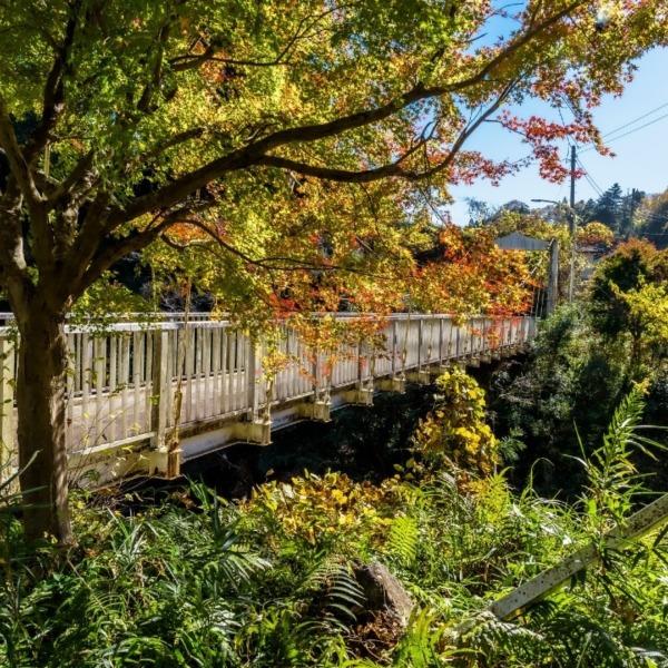白鳥橋(養老渓谷)