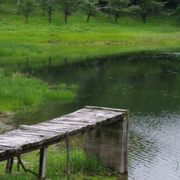 「溜池の風景」