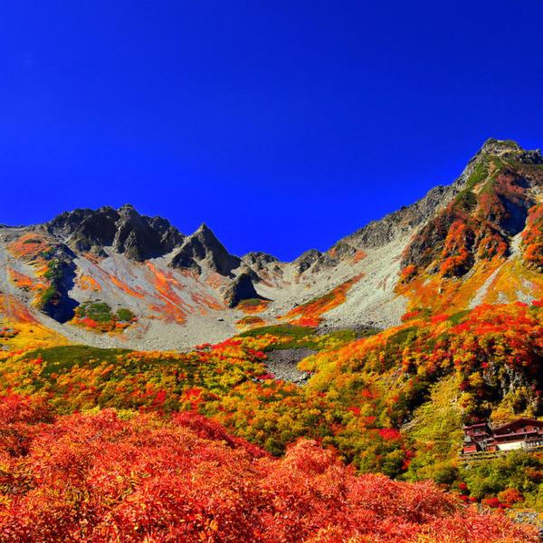 北アルプス涸沢カールの紅葉