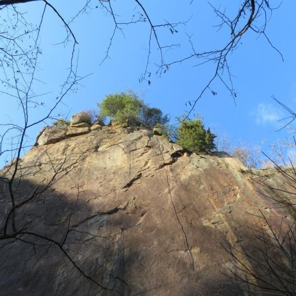 杉山北の丁場跡の絶壁