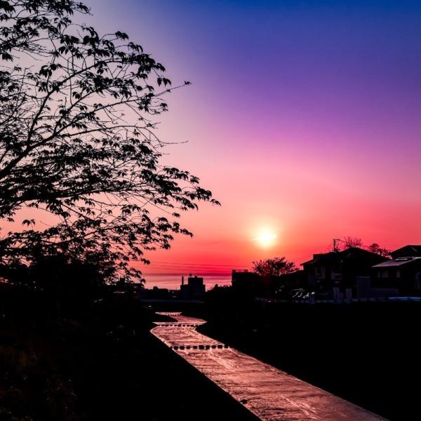 別府湾の早朝