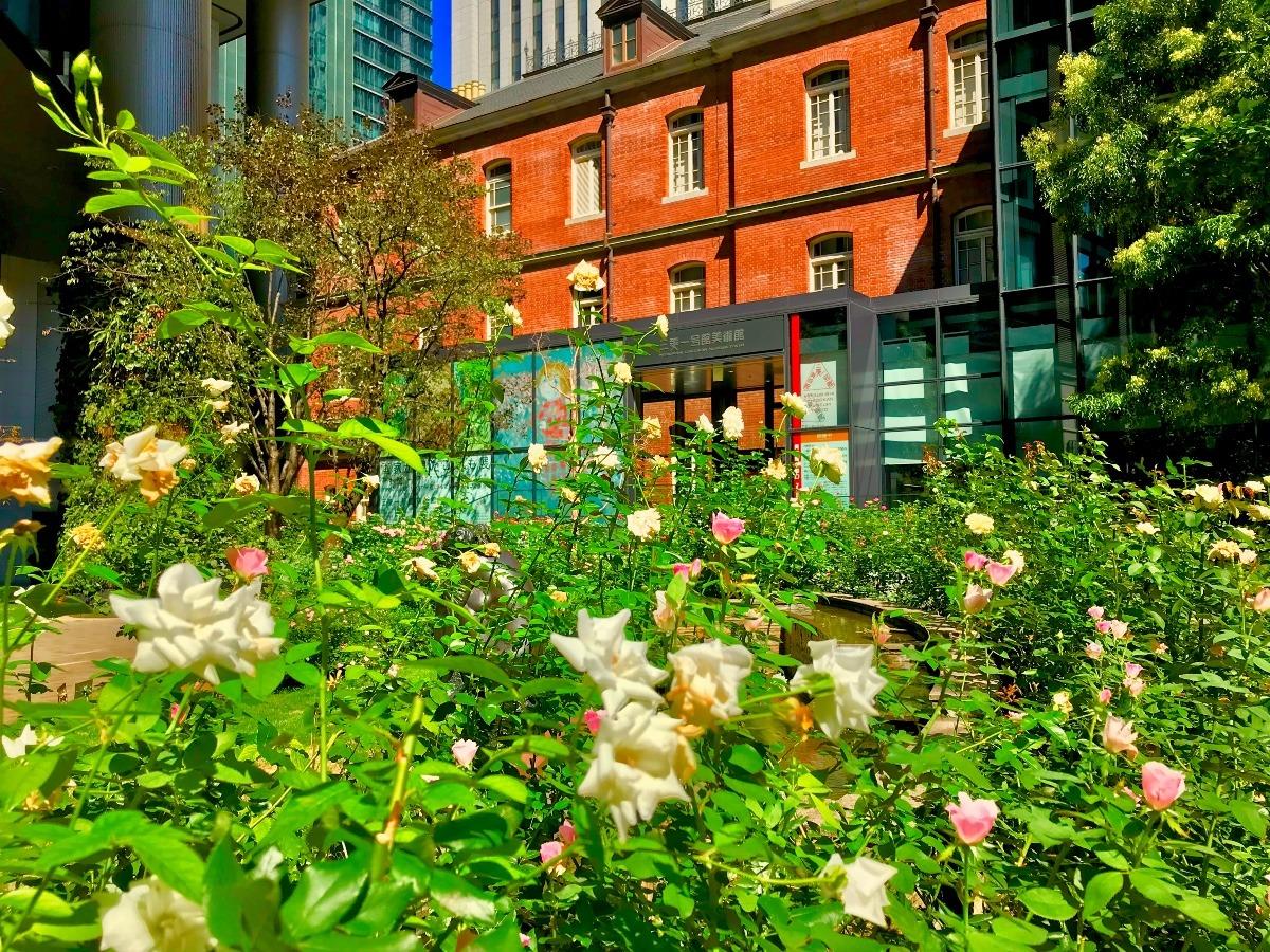 花と緑と近代建築