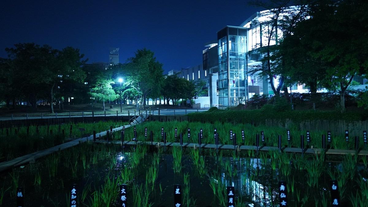しょうぶ沼公園と北綾瀬駅/2019夜景✨
