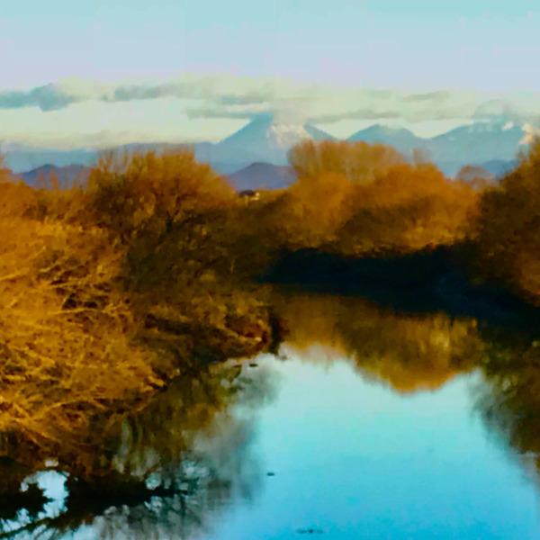 渡良瀬の水辺