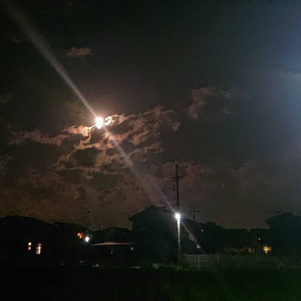 近所の夜景