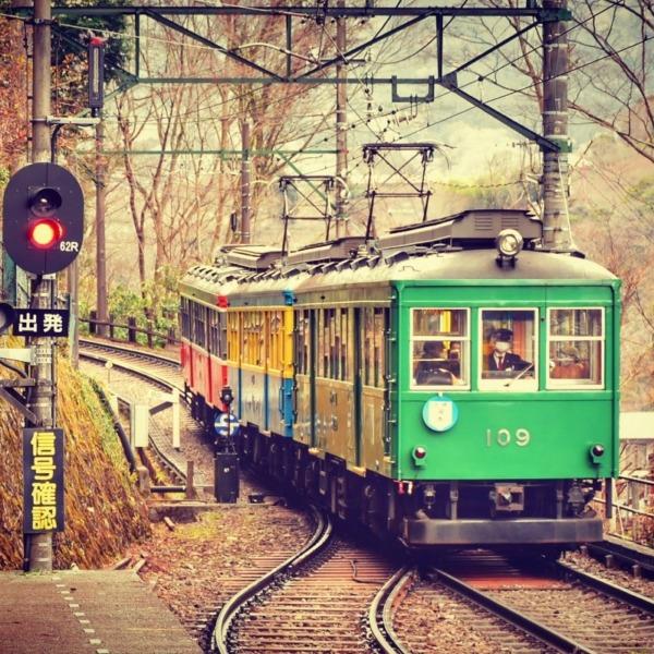 箱根登山鉄道 冬枯れ