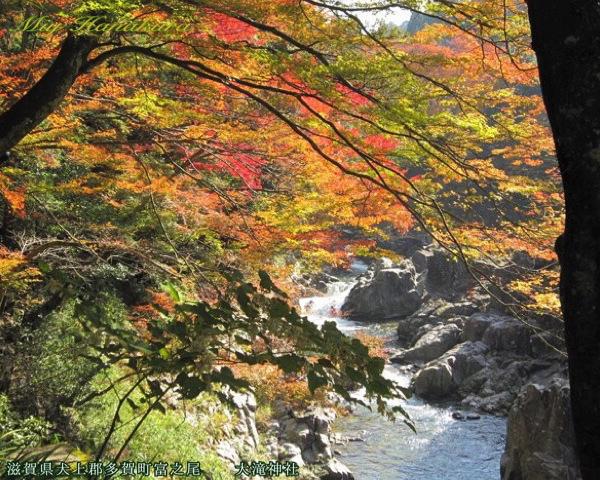 大瀧神社:紅葉の大蛇ヶ淵