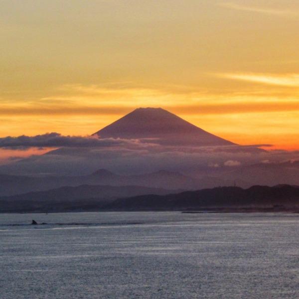 江の島からの夕富士