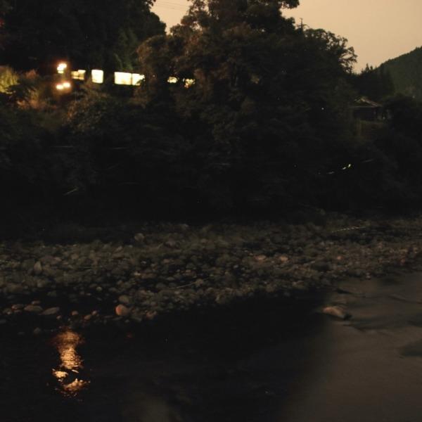 名松線とホタル 2020年6月29日