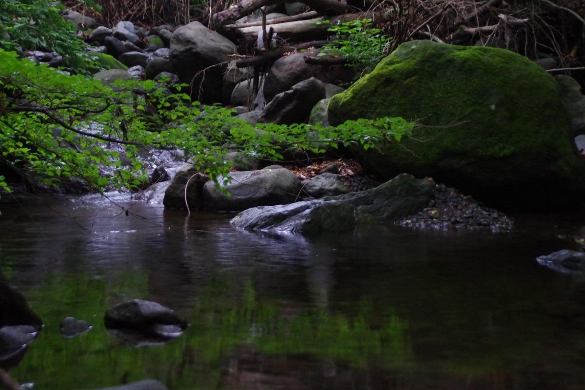 「夕暮れ時の渓流」