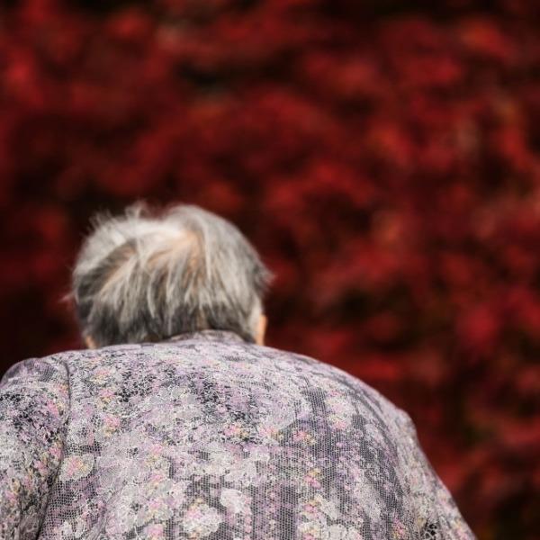 紅葉とおばあちゃん