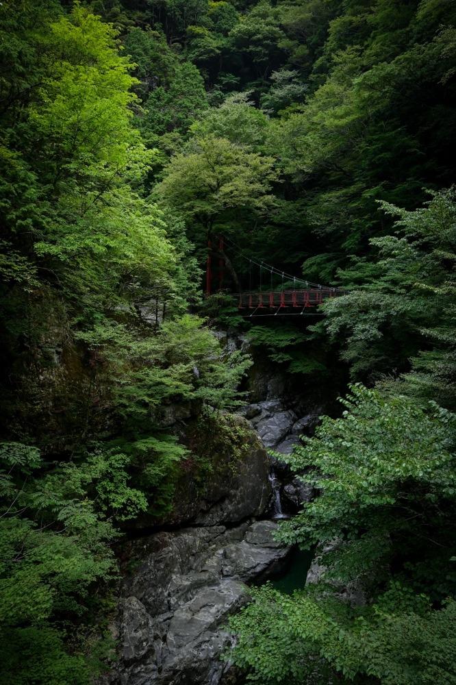 『渓谷に架かる吊橋』