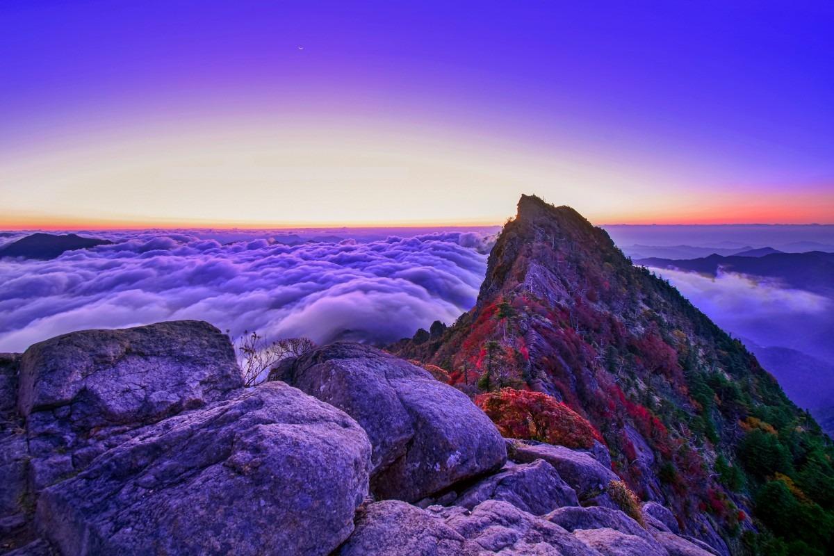 薄明の石槌山より紅葉と雲海