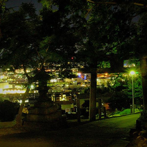 岩滝神社の鳥居と夜景
