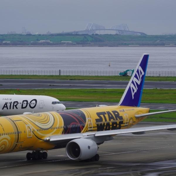 羽田空港2019✈ゲートブリッジコラボ✨
