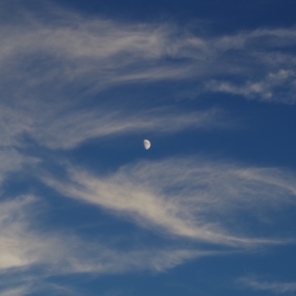 「夕暮れ時の月と雲」