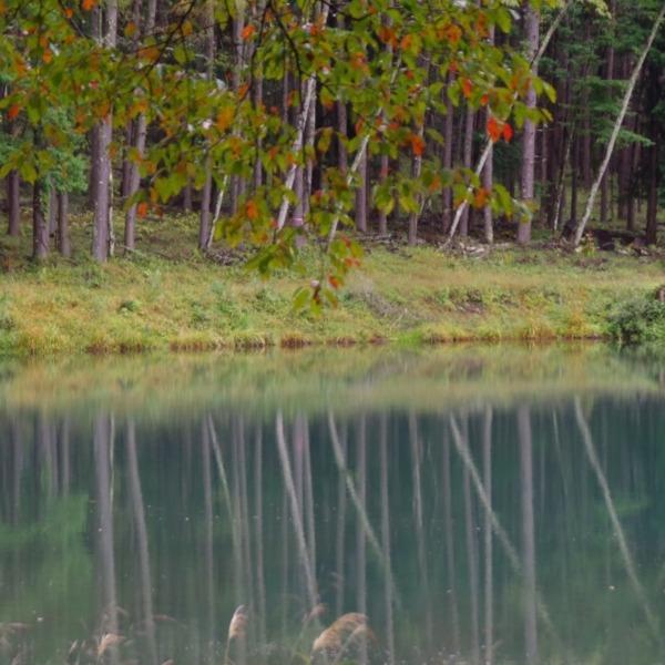 「奥蓼科の青い池」