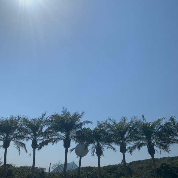 ロベと太陽と八丈小島。