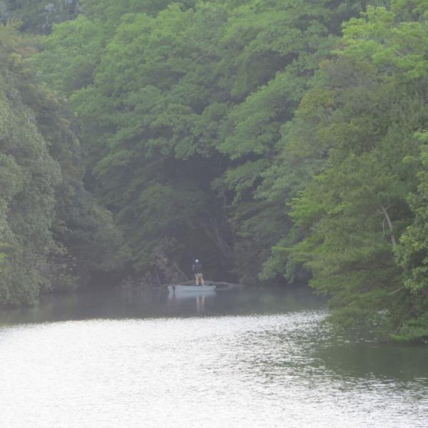 渓谷の杉谷池と釣り人