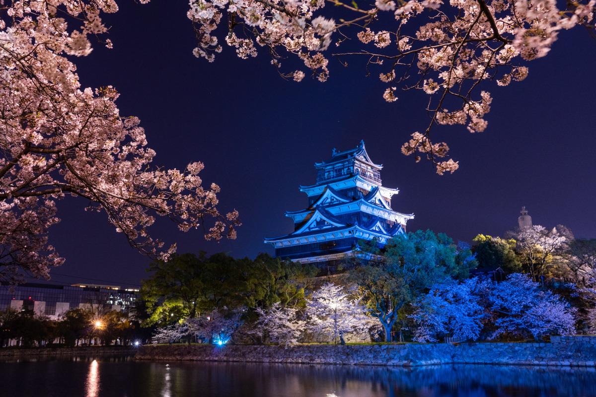 夜桜と広島城