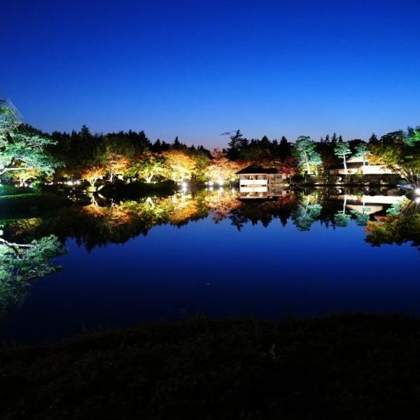 昭和記念公園:日本庭園ライトアップ🆒