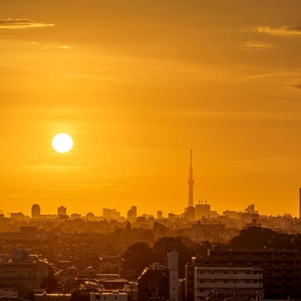 朝陽の風景
