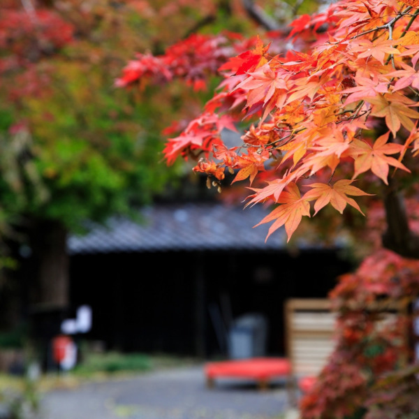 中野邸記念館