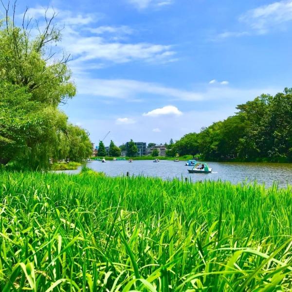 都会の水辺