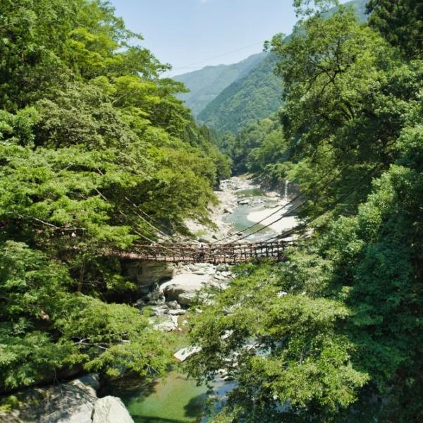 ー祖谷のかずら橋ー