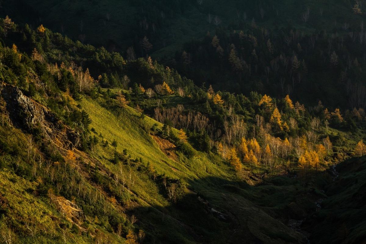 秋と冬の境界 横手山ドライブインから臨む山肌