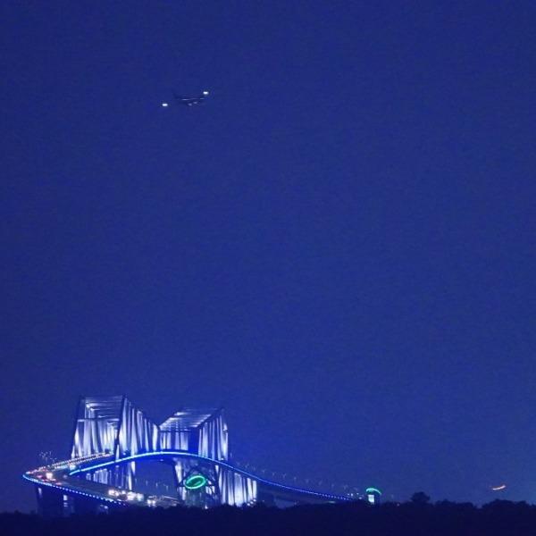 ゲートブリッジ2020/飛行機✈コラボ✨