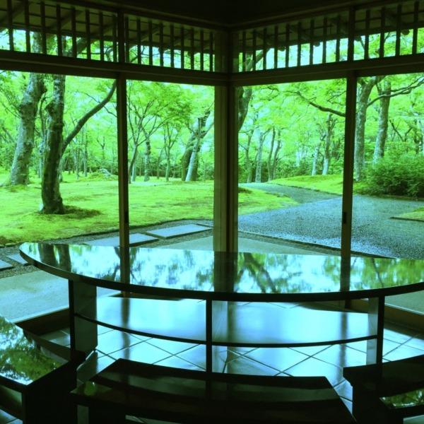 箱根美術館  苔庭