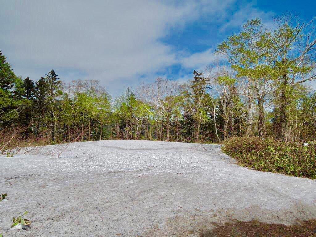 斜里国道の残雪