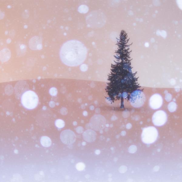 雪舞うクリスマスツリーの木