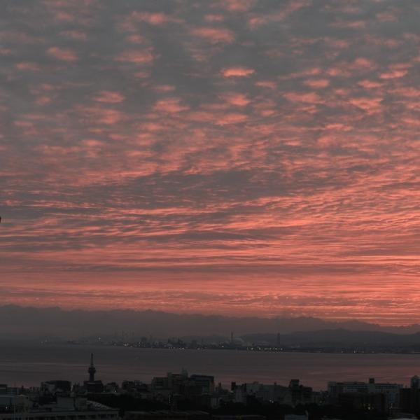 別府湾の朝