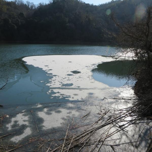 厳冬の杉谷ダム(浅口市 杉谷の里山)