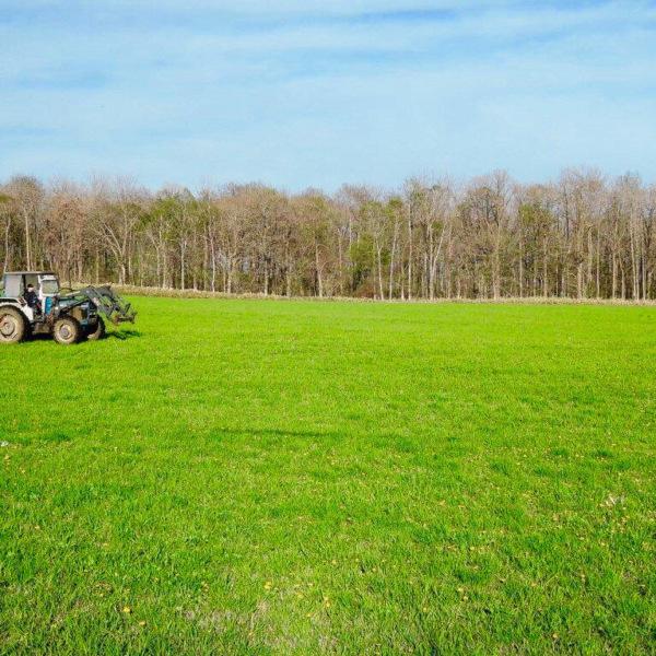 十勝平野 牧草地
