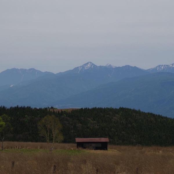 「霧ヶ峰高原から望む南アルプスの山々」