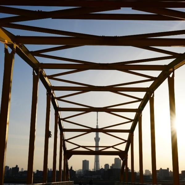 東四つ木_避難橋2021/黄金の輝き✨